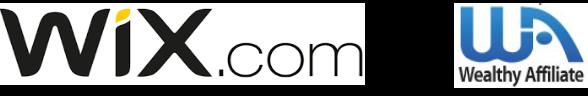 Is snel een website bouwen met Wix de juiste keus