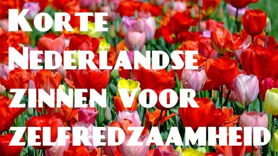 Korte Nederlandse zinnen voor zelfredzaamheid