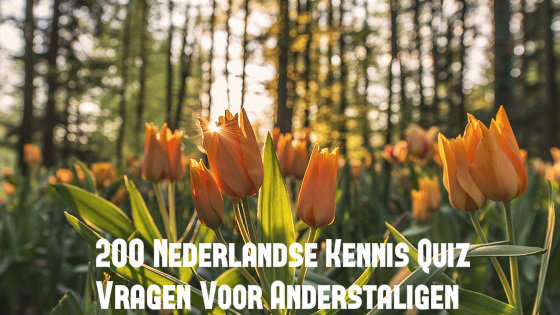 200 Nederlandse Kennis Quiz Vragen Voor Anderstaligen
