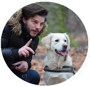 honden uitlaten en trainen